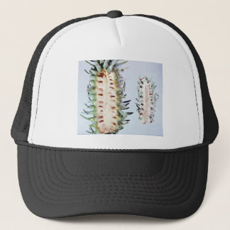 Cooley Spruce Gall Adelgid and Gall Pineus Trucker Hat