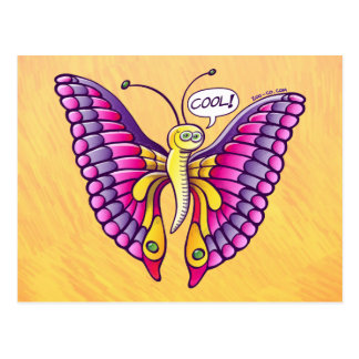 Coolorful Butterfly Postcard