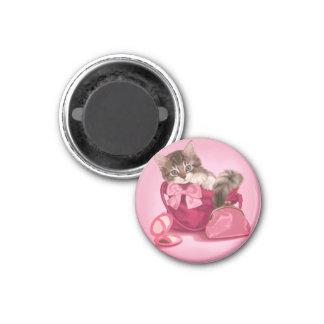 Coon de Maine en bolso rosado Imán Redondo 3 Cm