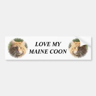 coon de Maine Pegatina Para Auto