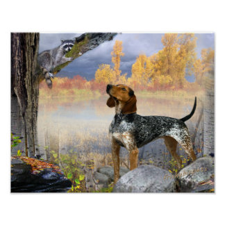 Coon Dog Trees Raccoon Poster