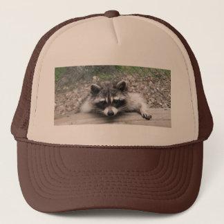 Coon Hat, Racoon Ball Cap