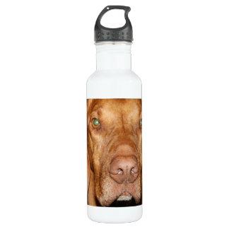 Coon Hound 24oz Water Bottle
