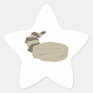 Coon Skin Cap Star Sticker