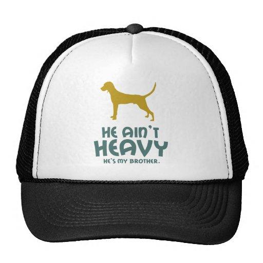 Coonhound de Redbone Gorra
