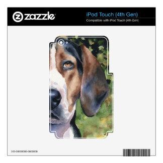 Coonhound del caminante de Treeing iPod Touch 4G Calcomanías