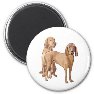 coonhound del redbone imán redondo 5 cm