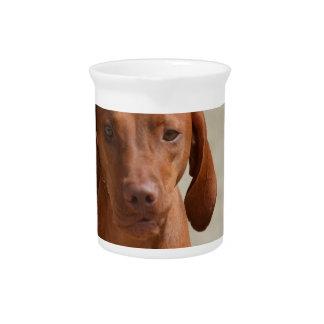 Coonhound Drink Pitcher
