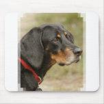 Coonhound - Gracie Lou Mousepads