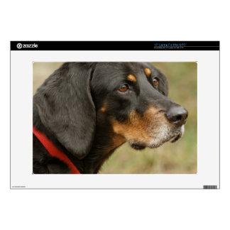 Coonhound - Gracie Lou Laptop Skin
