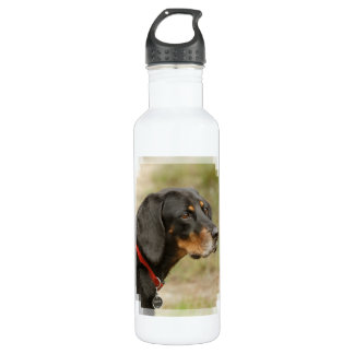 Coonhound - Gracie Lou Water Bottle