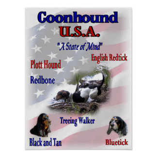 Coonhound Lovers Gifts Poster
