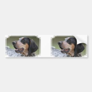 Coonhound Pegatina Para Auto