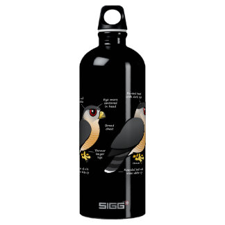 Coop v Sharpie Aluminum Water Bottle