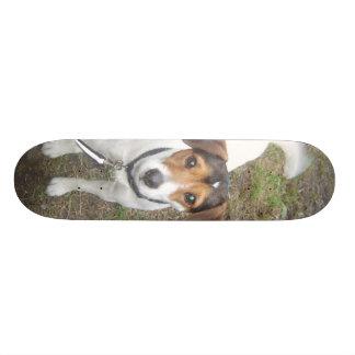 Cooper Board Skate Board
