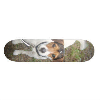 Cooper Board Skateboard Decks