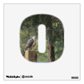Cooper's Hawk 0 Wall Decal