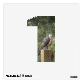 Cooper's Hawk 1 Wall Decal