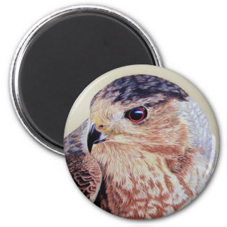 Coopers Hawk 2 Inch Round Magnet