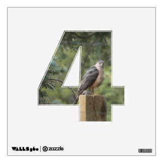 Cooper's Hawk 4 Wall Decal