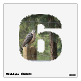 Cooper's Hawk 6 Wall Decal