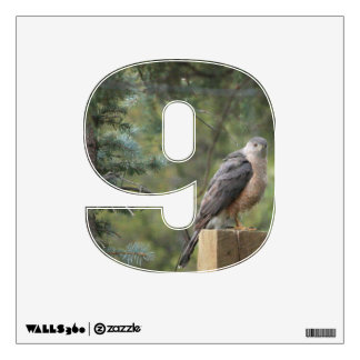 Cooper's Hawk 9 Wall Decal
