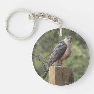 Cooper's Hawk Acrylic Round Keychain