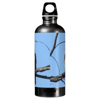 Cooper's Hawk Aluminum Water Bottle