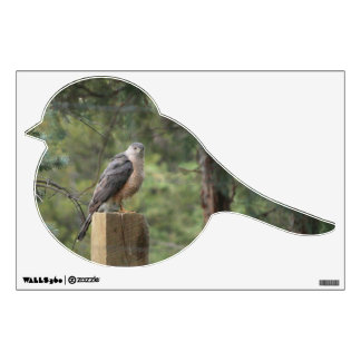 Cooper's Hawk Bird Wall Sticker