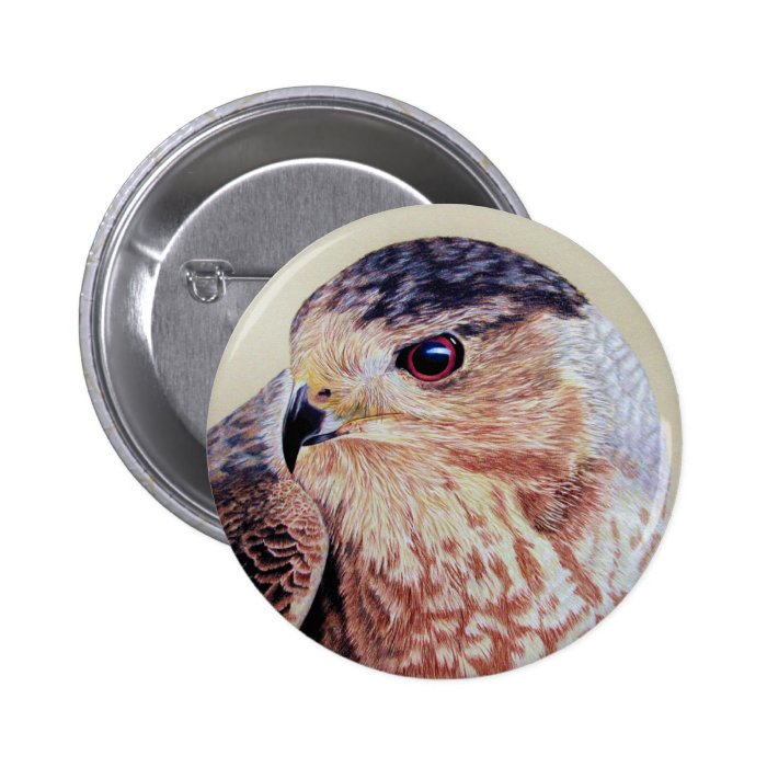 Coopers Hawk Button