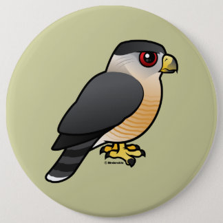 Cooper's Hawk Button