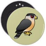 Cooper's Hawk Button