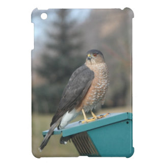 Coopers Hawk Case For The iPad Mini