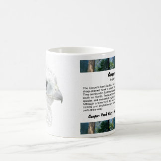 Coopers Hawk Chick Coffee Mug