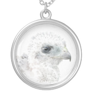Coopers Hawk Chick Round Pendant Necklace