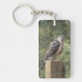 Cooper's Hawk Double Acrylic Keychain