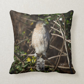 Coopers Hawk In the Morning Sunshine Throw Pillow