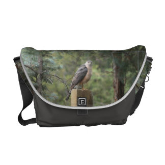 Cooper's Hawk Messenger Bag