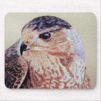 Coopers Hawk Mouse Pad