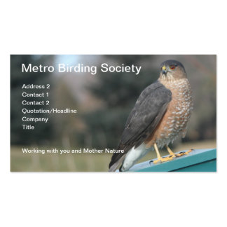 Cooper's Hawk Photo Double-Sided Standard Business Cards (Pack Of 100)