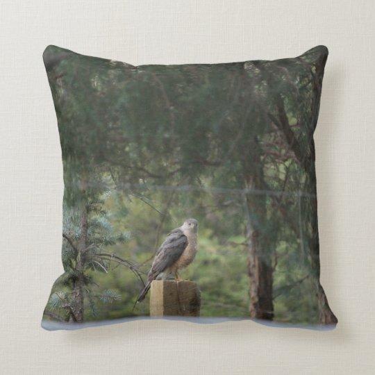 Cooper's Hawk Pillow