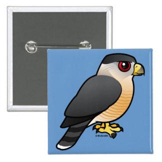 Cooper's Hawk Pinback Button