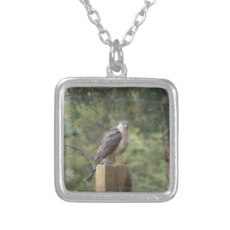 Cooper's Hawk Silver Plated Necklace