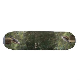 Cooper's Hawk Skateboard