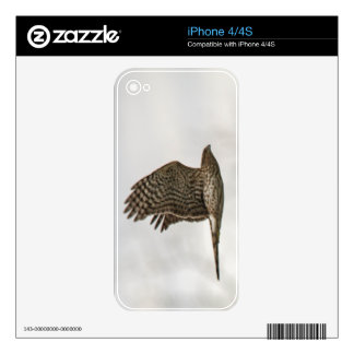 Cooper's Hawk Decals For The iPhone 4