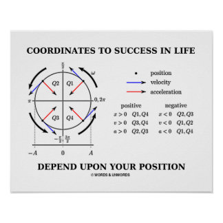 Coordenadas al éxito en la física de la posición póster