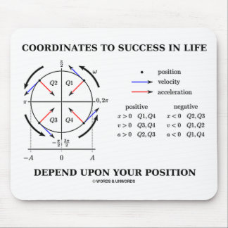 Coordinates To Success In Life Position Physics Mouse Pad