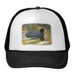 Coot 9R005D-127 Hat
