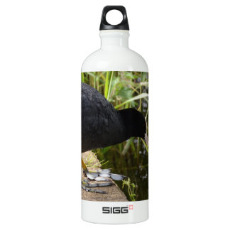 Coot Aluminum Water Bottle