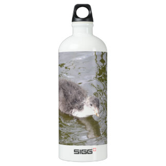 Coot Chick Aluminum Water Bottle
